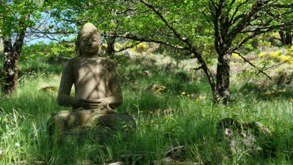 Un grand Bouddha de pierre vous accueille à l'entrée du temple zen Yujo Nyusanji