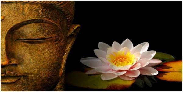 Le lotus... la position du lotus, zazen : patrimoine divin de l'humanité