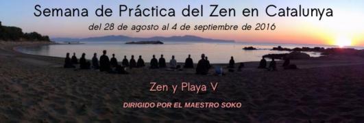 Zen playa Agosto 2016