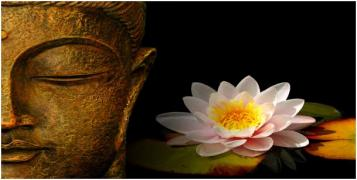 El loto. La postura del loto, zazen : patrimonio divino de la humanidad.