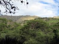 La montagne de l'Uriturco vue depuis le temple zen de Shobogenji. Ca plane!