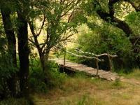 Passerelle en bois sur la rivière du temple zen Yujo Nyusanji