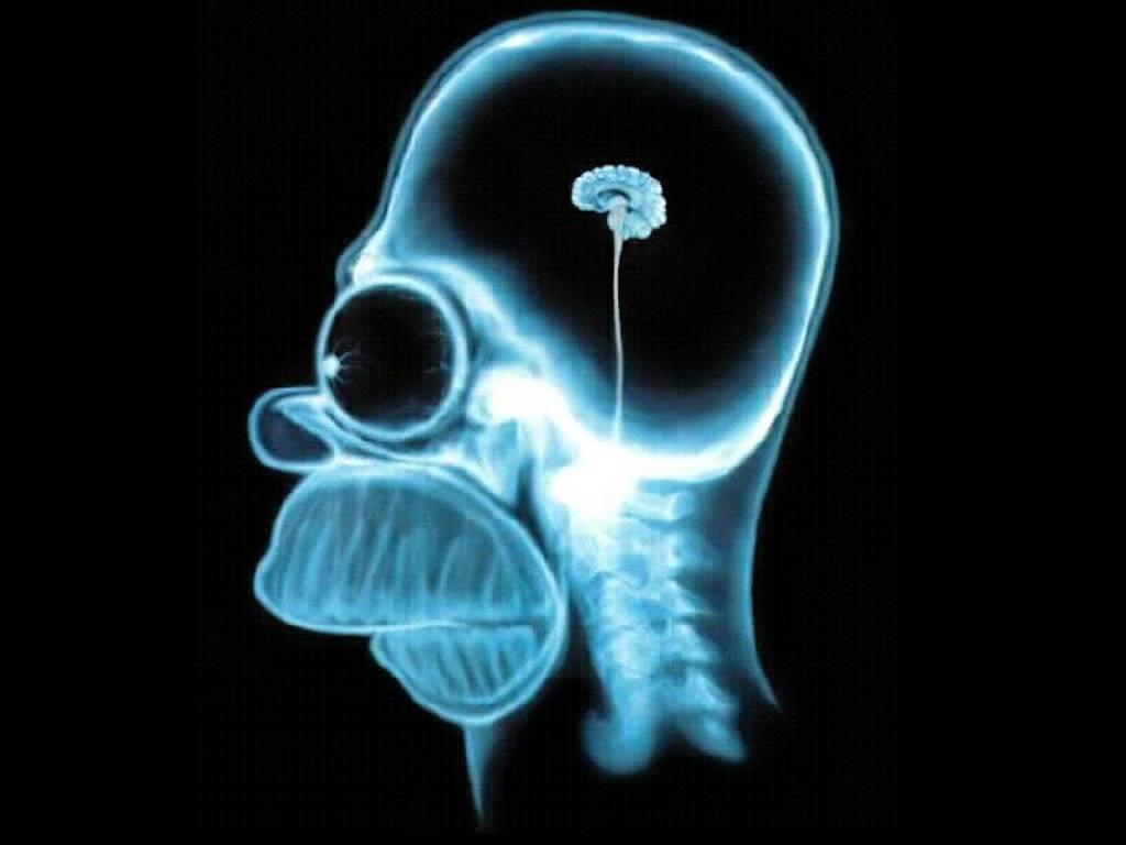 Meditar desarrolla el cerebro