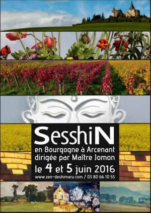 Seshin de Bourgogne 2016