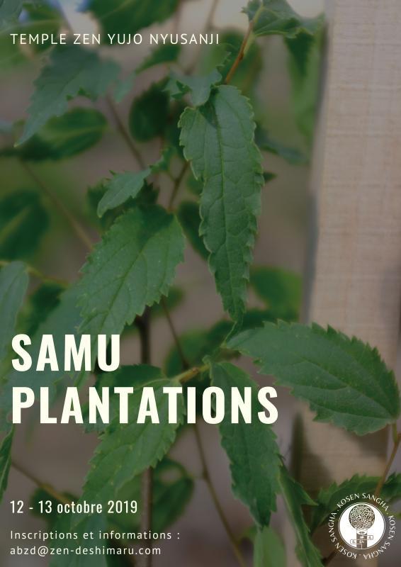 Samu plantation au temple Yujo Nyusanji (Sesshin): Zazen la méditation Zen, Temple du Caroux près de Montpellier